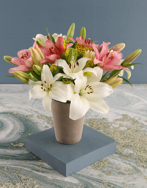 lilies: Lovely Lilies in Cement Pot!