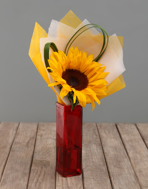 flowers: Single Sunflower in Colour Vase!