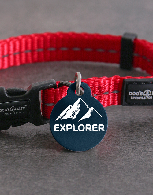 pets: Personalised Explorer ID Tag and XS Collar!