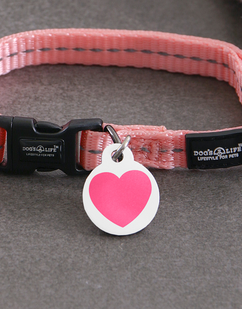 personalised: Personalised Heart ID Tag and XS Collar!