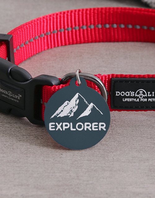 personalised: Personalised Explorer ID Tag and Collar!