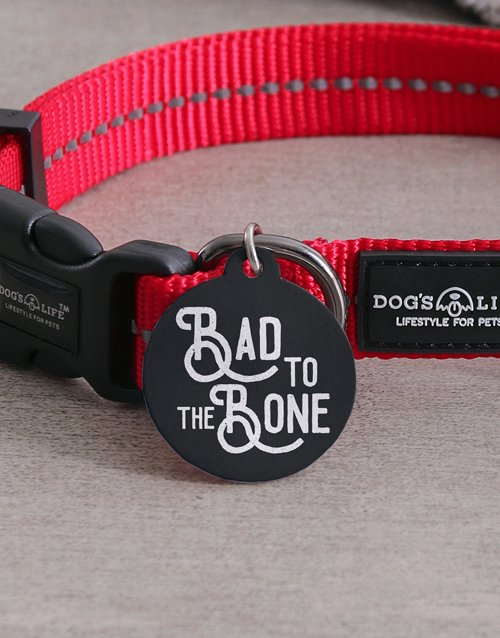 personalised: Personalised Bad ID Tag and Collar!