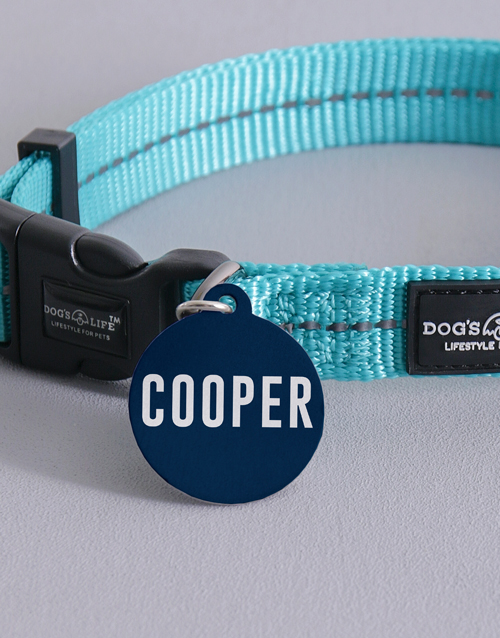 personalised: Personalised Turquoise ID Tag and Collar!