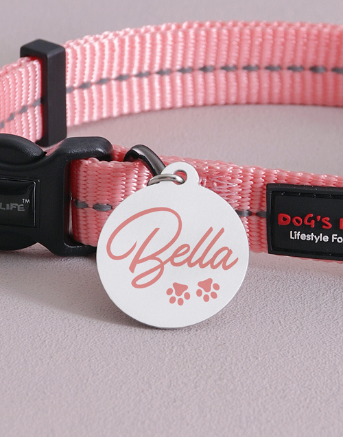 personalised: Personalised Pink ID Tag and Collar!