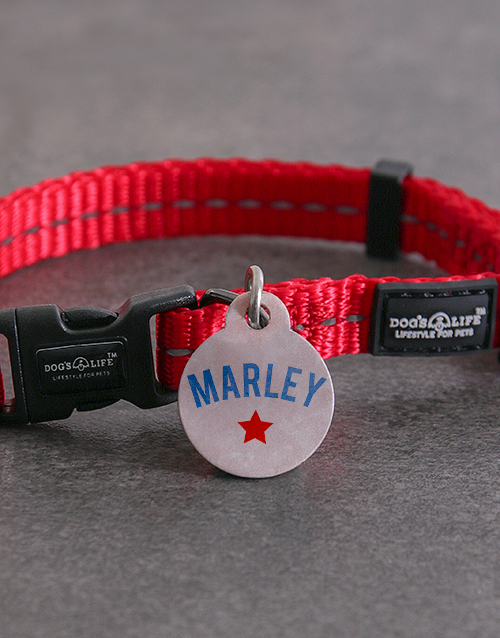 pets: Personalised Star ID Tag And XS Collar!
