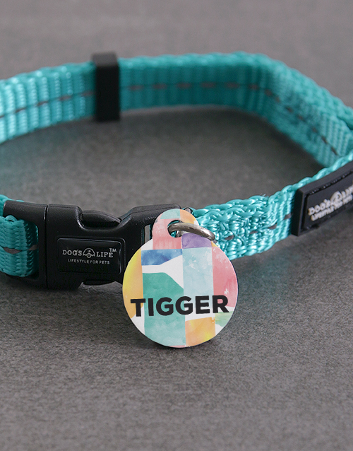 pets: Personalised Blocks ID Tag And XS Collar!