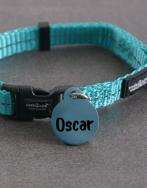 personalised: Personalised Blue ID Tag And XS Collar!