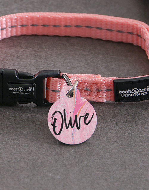 personalised: Personalised Paint ID Tag And XS Collar!