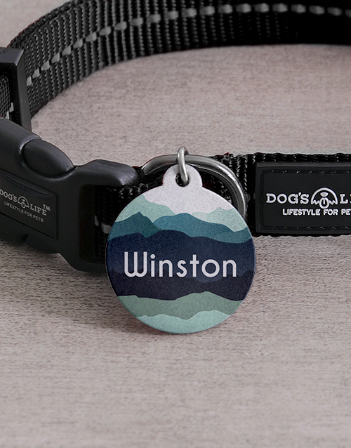 personalised: Personalised Blue Shade ID Tag And Collar!