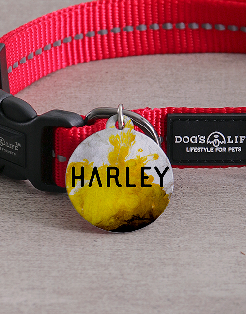 personalised: Personalised Yellow Paint ID Tag And Collar!