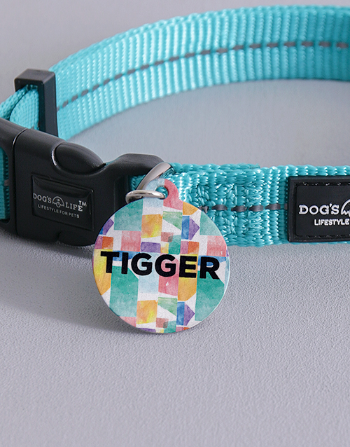 pets: Personalised Colour Blocks ID Tag And Collar!