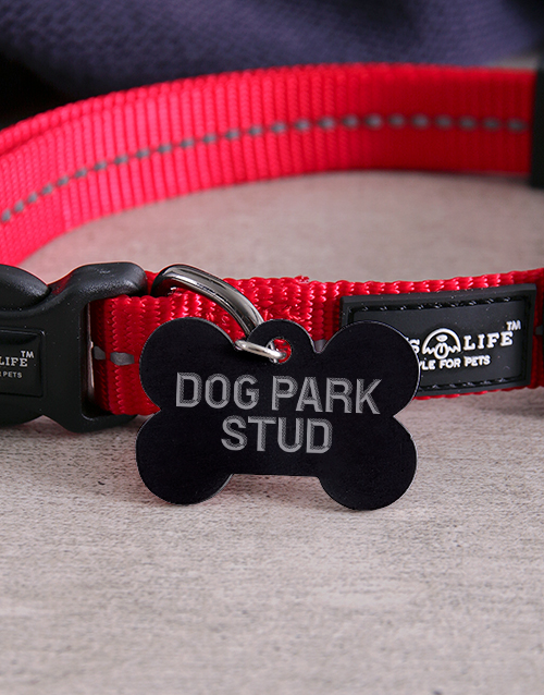 personalised: Personalised Park Bone ID Tag And Collar!