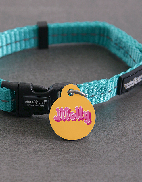 pets: Personalised Molly ID Tag and Collar!