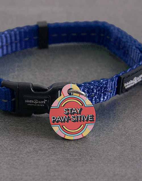 pets: Personalised Stay Paw ID Tag and Collar!