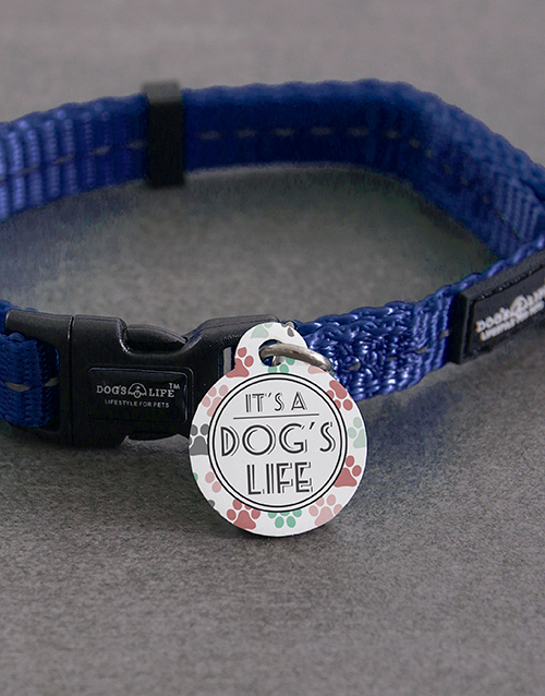 pets: Personalised Dogs Life ID Tag and Collar!