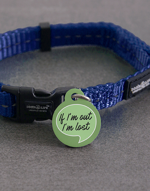 pets: Personalised If Im Out ID Tag and Collar!