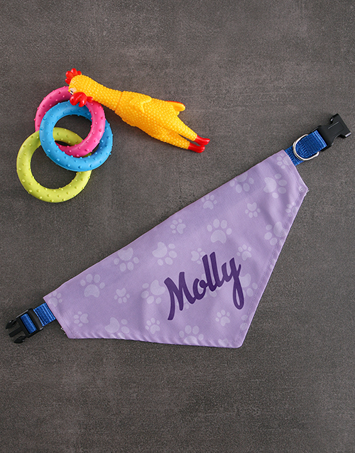 pets: Personalised Purple Paw Print Bandanna And Toys!