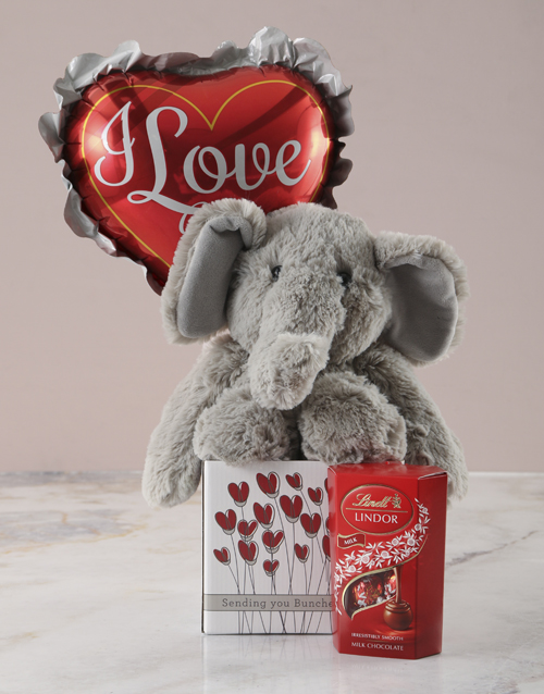 chocolate: Romantic Elephant Plushie Hamper!