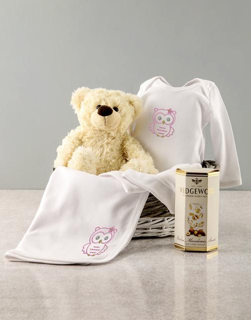 baby: Baby Girl Seven Piece Owl Gift!