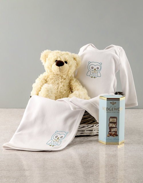 gifts: Baby Boy Seven Piece Owl Gift!