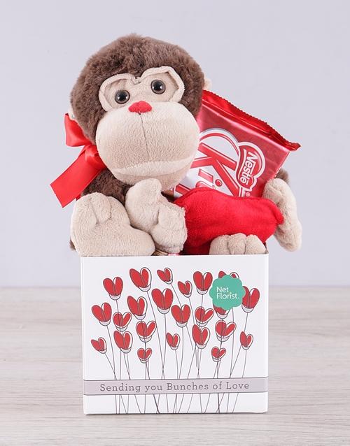 teddy-bears: Monkey and Kit Kat Box!