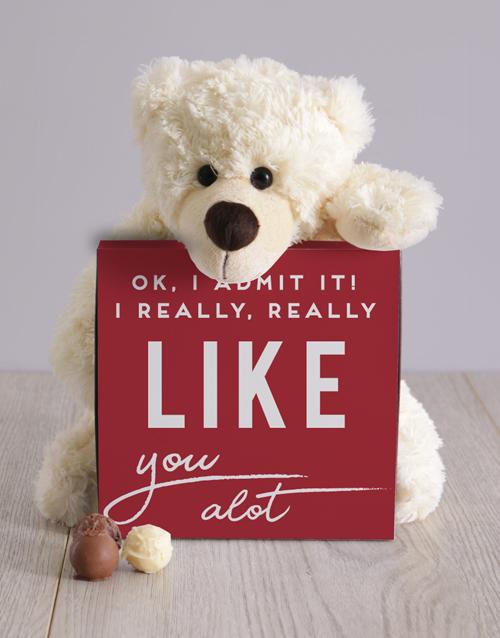 teddy-bears: I Really Like You Teddy Hamper!