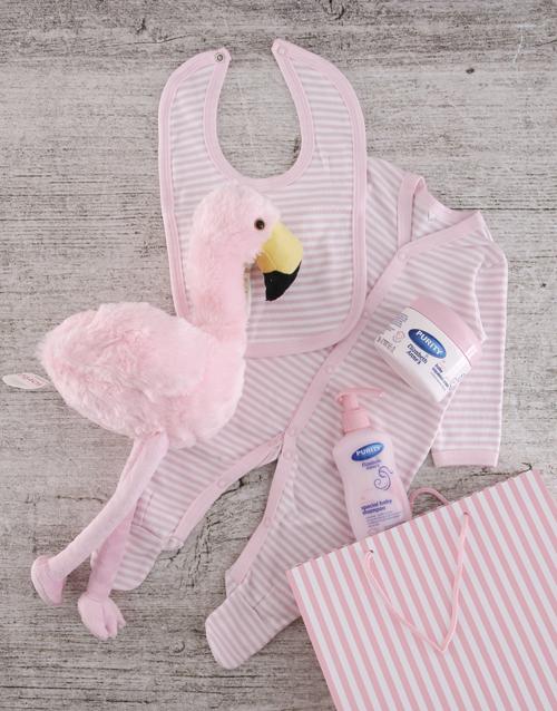 baby: Flamingo Gift Set for Baby Girl!