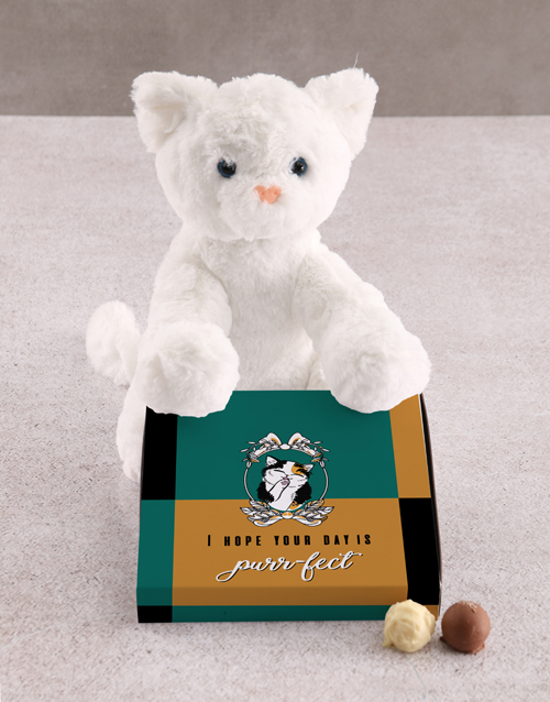 teddy-bears: Cat Teddy With Chocolate Tray!