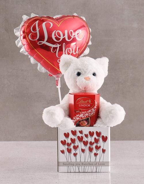 teddy-bears: Cat Teddy And Balloon In Box!