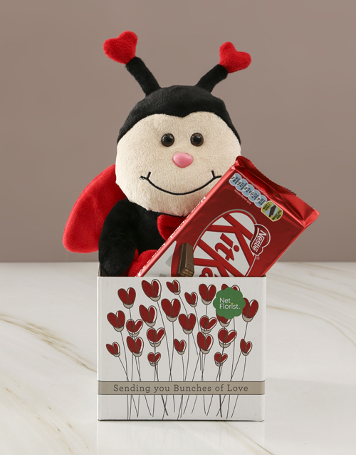chocolate: Ladybug  Love And KitKat Hamper!