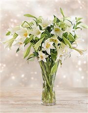 Picture of Elegant White Lilies in a Vase!