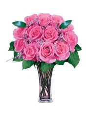 Picture of 12 Pink Roses!