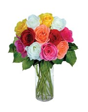 Picture of 12 Mixed Roses!