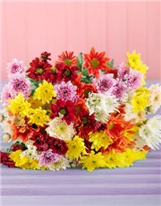 Picture of Chrysanthemum Bouquet!
