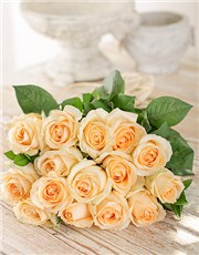 Picture of Cream Roses in Cellophane!