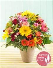 Picture of Seasonal Flowers in Ceramic Vase!