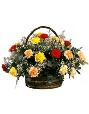 Picture of Rainbow Carnation Basket!