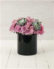 Picture of Roses & Succulents in Cylinder Vase!