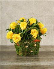 Picture of Yellow Roses in a Moss Basket!