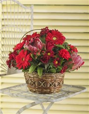 Picture of Basket of Red Seasonal Flowers!