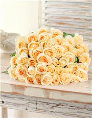 Picture of Cream Roses !