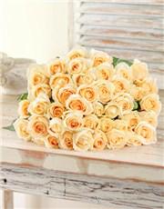 Picture of Cream Roses !
