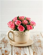 Picture of Pink Roses in a Teacup!