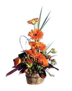flowers: Ornate Orange Arrangement!