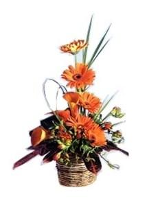 flowers: Ornate Orange Arrangement!
