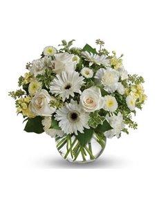 flowers: Isle of White!