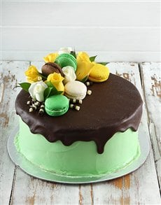 bakery: Lime Green Macaroon Cake!