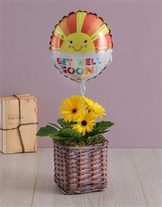 flowers: Discovery Get Well Gerbera And Balloon!
