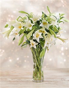 flowers: Lilies in a Vase!