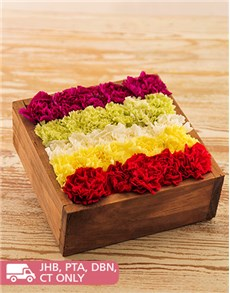 flowers: Mixed Carnations in Wooden Box!
